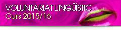 voluntariat2015